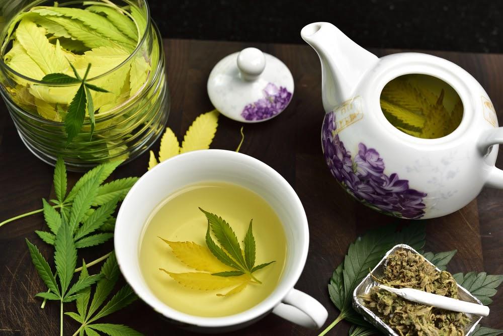 Weed Tea: DIY Cannabis Tea