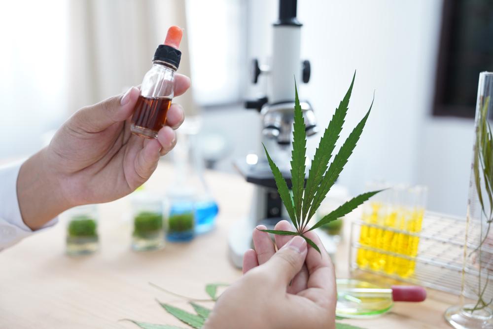 cannabinol definition