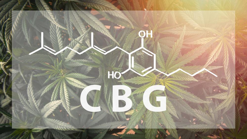 What is CBG? – The Secret Behind Cannabigerol