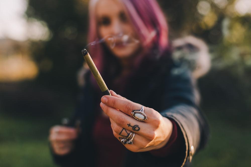 cannabis culture rules