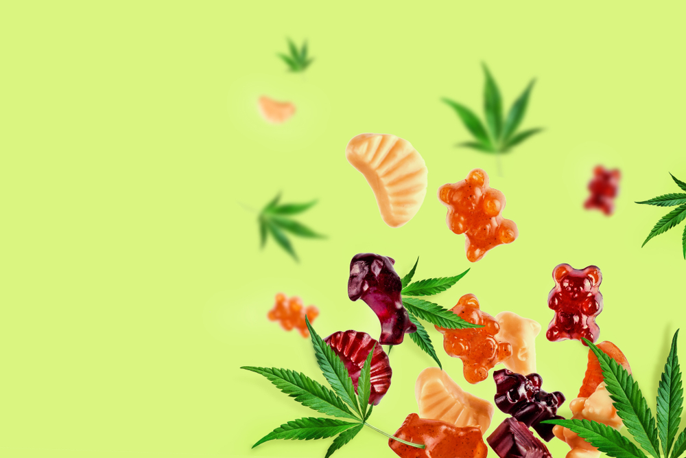 THC Gummies –  Cannabis Edibles You Need To Try