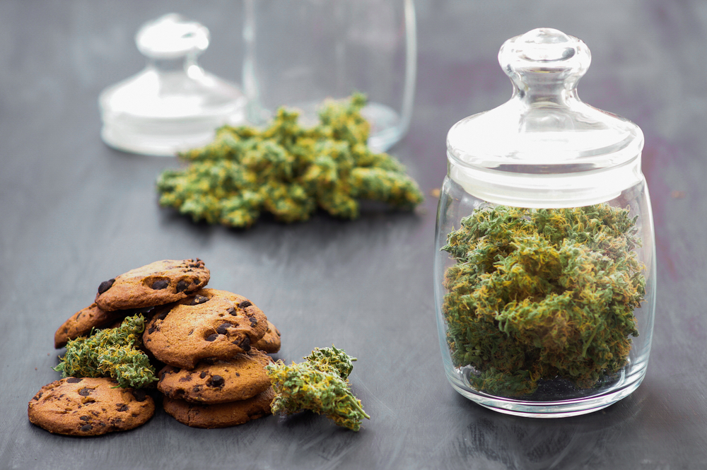 How Long for Edibles to Kick in – All You Need to Know