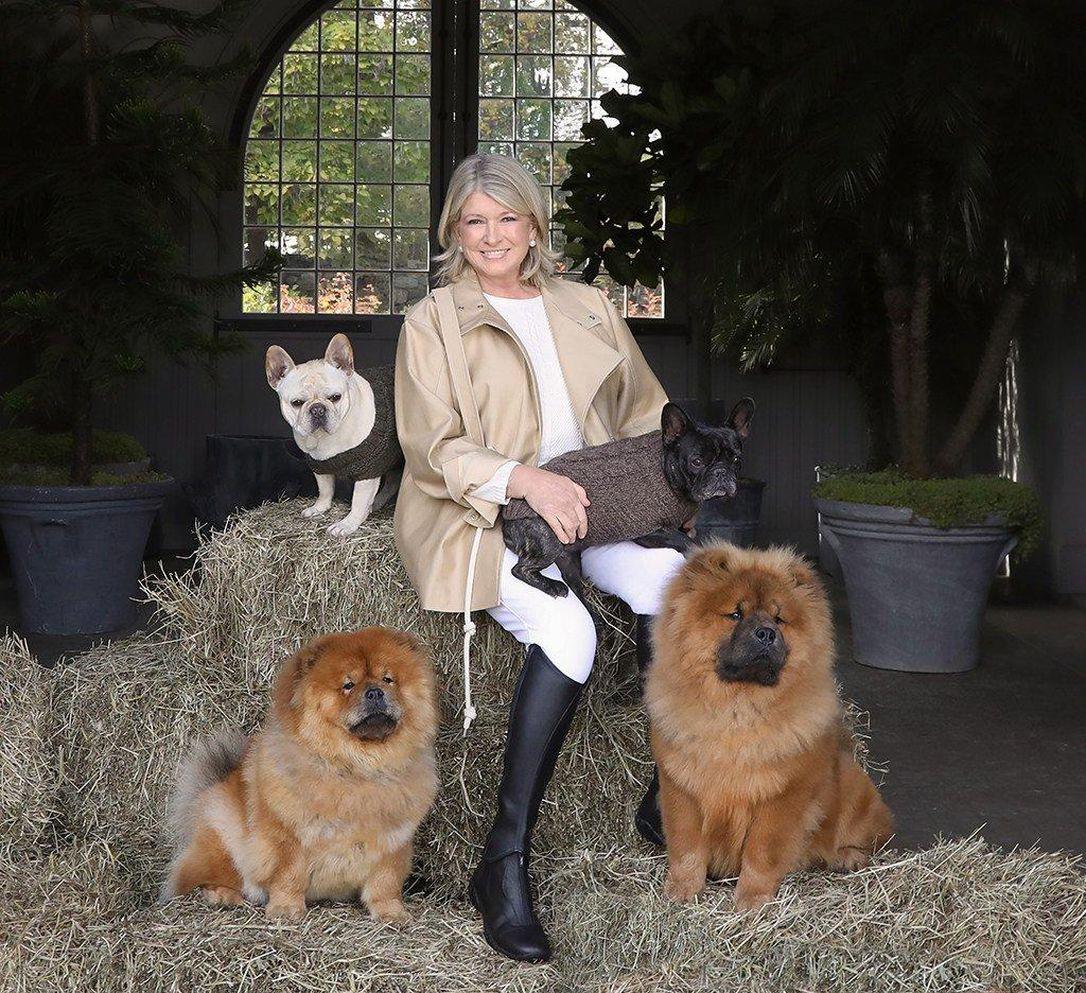 Martha Stewart cbd edibles for dogs