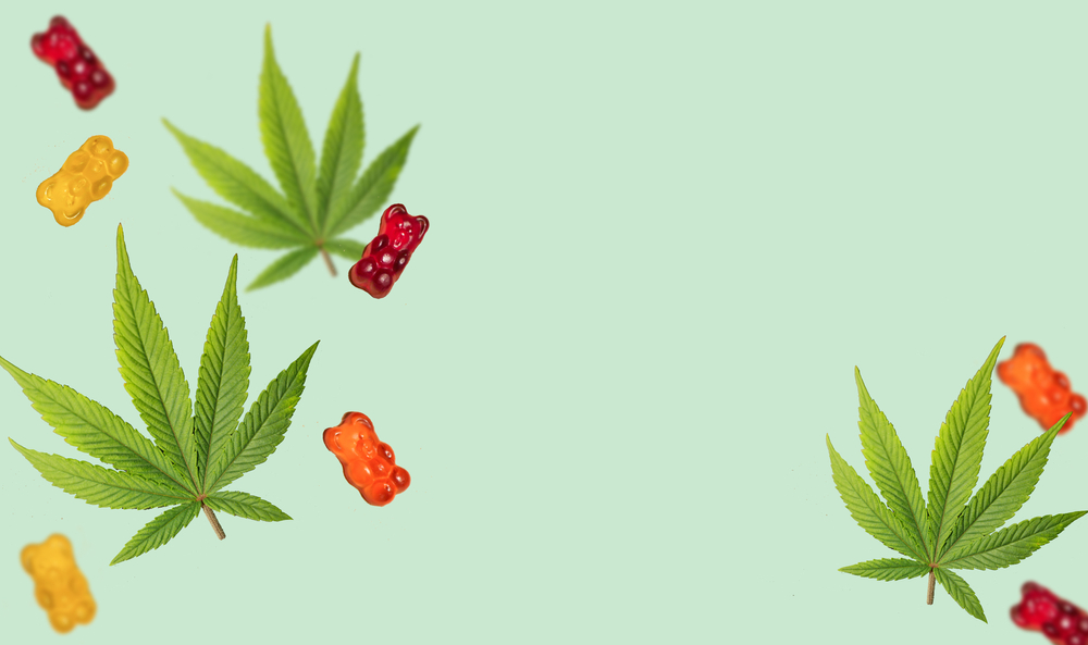 5 Reasons Weed Gummies  are the Most Popular Weed Edible
