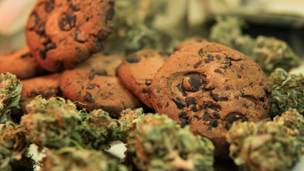 How to Make Simple and Easy Weed Cookies at Home