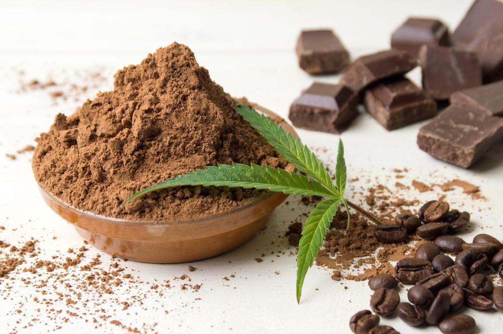 Quick & Easy Cannabis Chocolate Recipe
