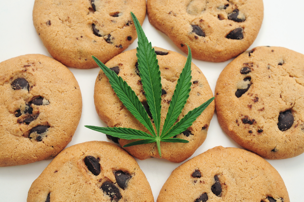 how to make cannabis cookies